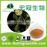 treat hypotension Siberian Ginseng Extract Eleutheroside B+E 0.8% 1.2% 1.5% Pharmaceutical grade