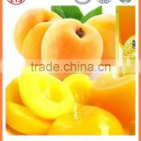 High quality and taste good canned fruits fresh Canned yellow peach