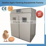 Energy saving poultry incubators for chicken eggs RD-2376 penis machine solar hatcher