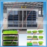 Large Capacity Seeding Tray Machine / Bean Sprouting Machine