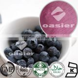 GMP factory offer blueberry powder spray dried and freeze dried powder fruit juice powder