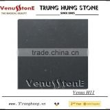 Vietnam Bluestone Honed