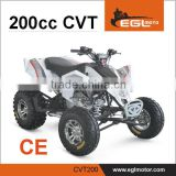 Automatic Atv 200cc CVT Transmission