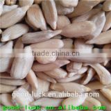 5009 sunflower seed kernels for bird feed