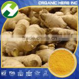Ginger Extract Powder(water soluble )/High Quality Ginger Extract 6-gingerol/natural Gingerols 10% 15% 20%