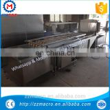 vegetable washing machine/fruit washing machine/pineapple washing machine
