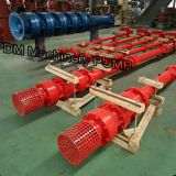 diesel long shaft deep well pump set