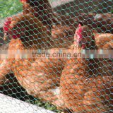 2015 Pvc Coated Hexagonal Wire Mesh For Farm Fence/animal feeding netting/weaving wire mesh hexagonal