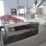professional manufacture super quality industrial microwave drying machine with CE