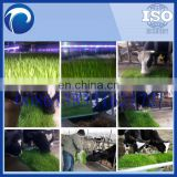 hydroponic green grass growing cattle animal fodder making machine