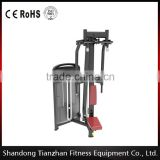fitness body building/ newest gym equipment /super gym equipment/outdoor gym equipment/Rear Delt/TZ-4018