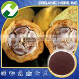 Pure Halal cocoa bean extract | price of cocoa powder pigment