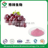 High Quality Grape Frozen Fruit Powder Organic Grape Fruit Flavor Powder