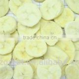 Frozen Dried FD Sliced Banana for sale
