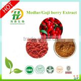 Wholesale Bulk Goji Berries Extract Powder / 20% 30% 50% Polysaccharides from Goji berries