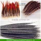 Beautiful Natural Pheasant Feathers Wholesale All Wedding Favor Craft Trimmings                                                                         Quality Choice