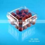 1000g Square Disposable Plastic Fesh Fruit Packing Container with Vent Hole