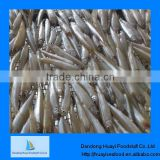 High quality frozen whole pond smelt