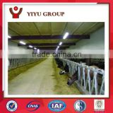 prefabricated poultry shed/light steel structure chicken house/light steel structural chicken shed