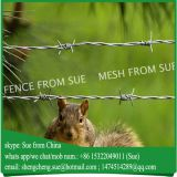 China factory Hot sale galvanised barbed wire in stock