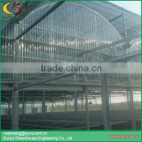 Arch roof type polycarbonate greenhouse commercial polycarbonate cover greenhouse for sale