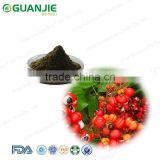 Factory supply Guarana extract powder guarana juice powder