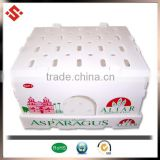 fruit packaging boxes PP custom corrugated plastic box pp plastic hat storage box for fruit