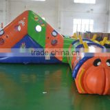 New design best seller customized used commercial inflatable caterpillar bouncer tunnel for sale