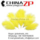 CHINAZP No.1 Supplier in China Factory Exporting Bulk Sale from 6 inch to 8 inch Dyed Gold Ostrich Feathers