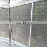 greenhouse 50mesh insect net