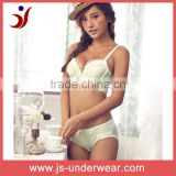 Mature classic underwear, nylon embroidery bra and panties, lady sexy fancy bra and thong design, woman underwear sexy bra set