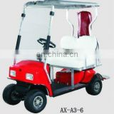 AX-A3-6 electric Golf Cart with 2 seater, smart electric cart with CE certificate