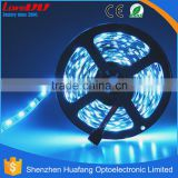 Chinese manufacturer suply strip club supled strip light 5050smd led strplies 24v magic rgb led strip chasing light