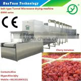 tunnel type industrial micrwave fruits drying sterilizing machine/dryer