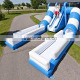 color customized inflatable water or dry slide / special design inflatable slide for summer