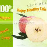 China supplier of Fresh hanfu apple fresh apple fruit from Liaoning province