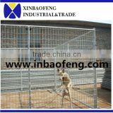 steel dog house wire dog cage galvanized dog cages--Qingdao XinBaoFeng