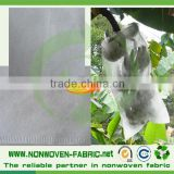 Eco-friendly agricultural PP spunbond nonwoven fabric for plants cover and fruit protection bag