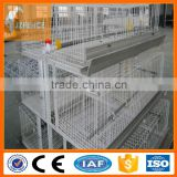 Automatic chicken layer cage for sale in philippines battery chicken cage broiler chicken cage