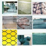 China factory direct sale chicken hexagonal wire netting/stainless steel hexagonal wire netting