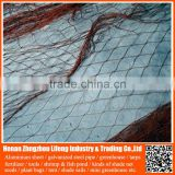 build plastic bird trap net / netting mesh , nylon anti bird net fabric , nylon safety net for fruit / vegetable