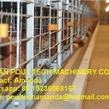 South Africa Chicken Farming Full Automatic H Frame Layer Cage & Chicken Cage & Laying Hen Cage for Egg Production in Chicken Shed