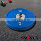 crossfit competition bumper plates colored