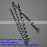 electro galvanized common wire nail/common iron wire nails/bright common nails CN-010D