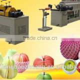 FDA Approved Customized PE Foam Guava Foam Net For Fresh Fruits Packing
