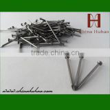 iron common nails made stainless steel nail wholesale concrete nails use for concrete wall