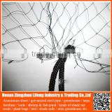 Invisible Trap Nylon Bird Netting , Anti Bird Net fo catching birds , hdpe Bird Netting fabric For Sale