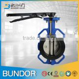 With-Pin Type Wafer Soft Seat Butterfly Valve Cast Iron