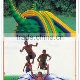 Wet Dry Frozen Water Park Jumping Castle with Prices Inflatable Combo for Sale