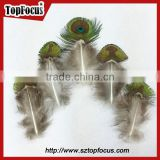 hot sale designer indian cheap natural artificial peacock feathers